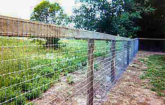 Field Pasture Cattle/Sheep Wire Fence - Petaluma, CA