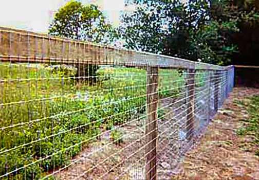 DiFranco Gate & Fence Company - Custom Corral Fences - Wire Corral Fence - Rohnert Park, CA