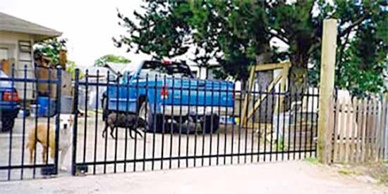 DiFranco Gate & Fence Company - Custom Ornamental Iron Driveway Gates - Slider Picket - Driveway Gate - Petaluma, CA