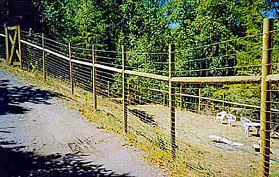 DiFranco Gate & Fence Company - Ornamental Iron Fence & Gates - Western Style with designed top Fence and Yard Gate - Petaluma, CA